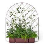 Väggspaljé Gro, med planteringskärl small och large som tillbehör. Design Mia Cullin. Nyhet 2019
