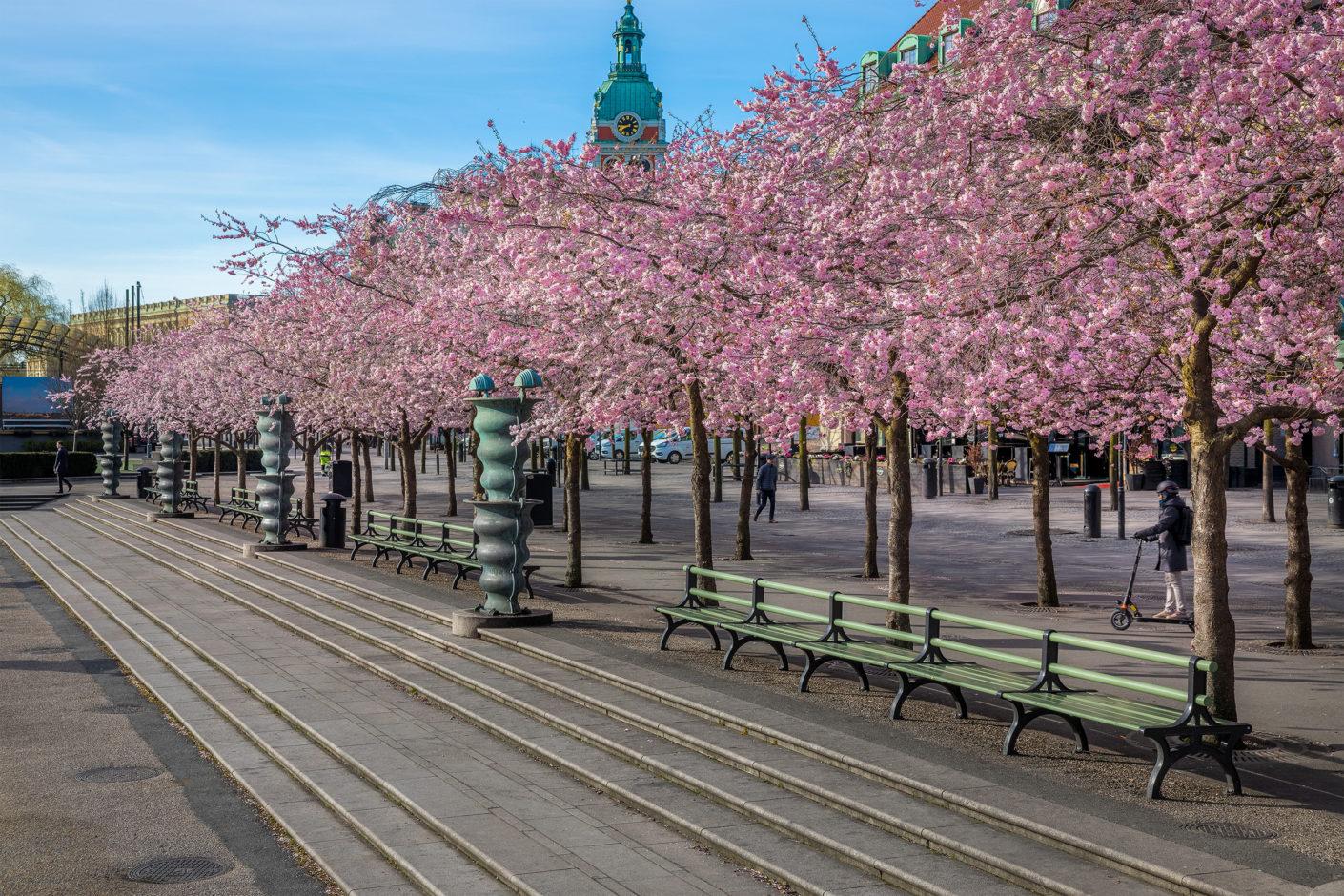 Nolas långsoffor från Kungsträdgården i Stockholm. Foto: Jann Lipka